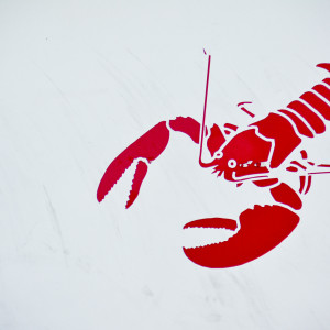 A lobster on the side of a fishing boat on the Eastern Shore of Nova Scotia by Picture Perfect Tours